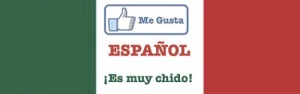 Me gusta español. Es muy chido! Bookmark