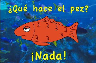 que hace un pez poster.png