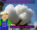 algodon in history