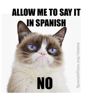 Grumpy Cat in Spanish