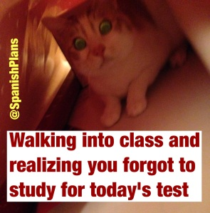 Forgot to study