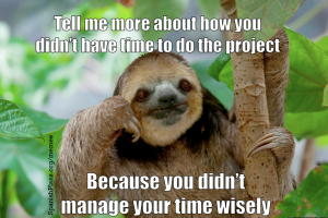 Tell me more meme sloth