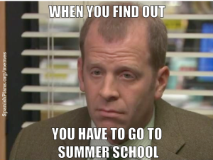 Finding out you have to go to summer school meme