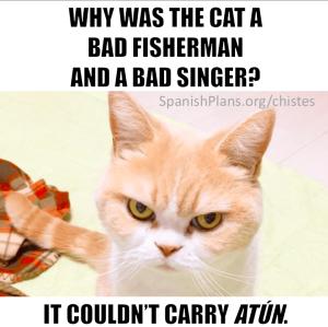 carry atun