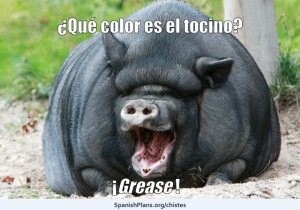 Gris Grease Joke Chiste from SpanishPlans.org