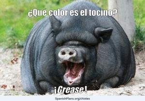 Gris Grease Joke Chiste from SpanishPlans.org