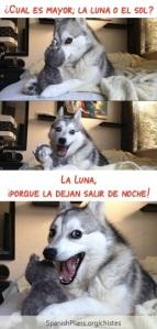 Luna Joke