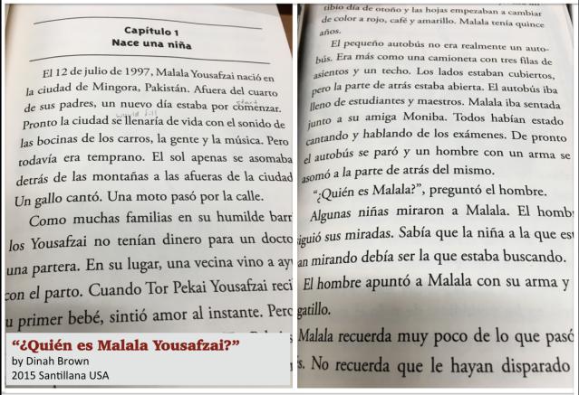 Quien es Malala novel