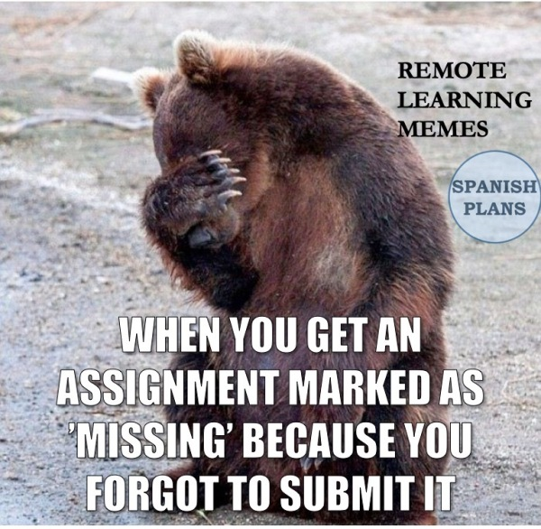 Distance Learning Memes